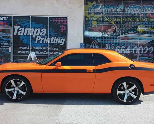 Custom Graphics Tampa Printing